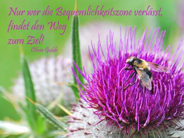 ziele_wuensche